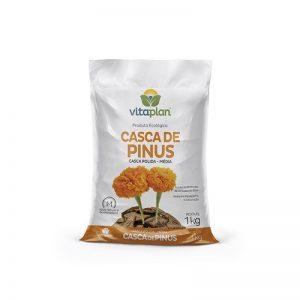Casca Pinus Polida Média 1kg